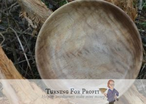 turned wooden bowl in natural light setting