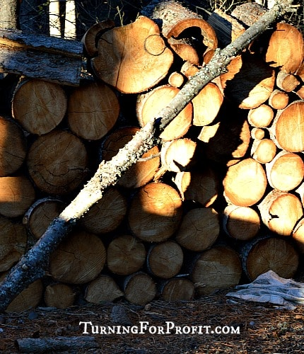 Wood in woodpile