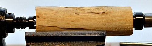 Tree Spalted Birch Round