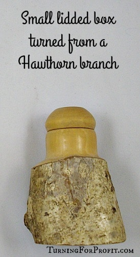 creative woodtuner hawthorn box