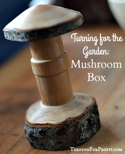 Garden Ornaments: A Mushroom Box
