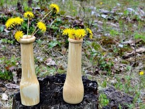 Perfect for wild flowers a pair of weed pots